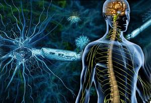 بیماری ام اس(MS) چیست؟ علایم، علت، تشخیص و درمان